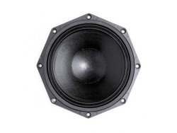 B & C - B & C 12-PS 100 Mid Bass Hoparlör